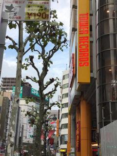 目の美容院渋谷サロン| 疲れ目と体のリラクゼーションサロンの画像